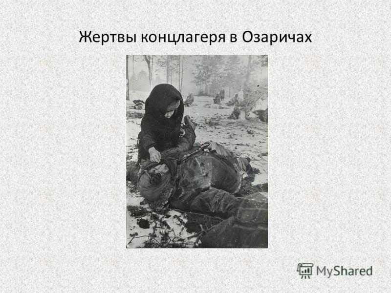 Жертвы концлагеря в Озаричах