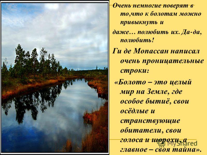 Очень немногие поверят в то, что к болотам можно привыкнуть и даже … полюбить их. Да - да, полюбить ! Ги де Мопассан написал очень проницательные строки : « Болото – это целый мир на Земле, где особое бытиё, свои осёдлые и странствующие обитатели, св
