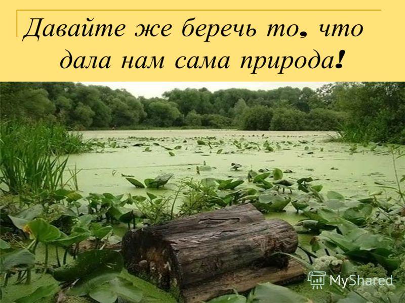 Давайте же беречь то, что дала нам сама природа !