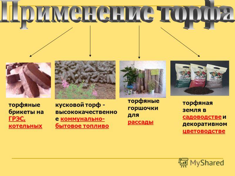 торфяная земля в садоводстве и декоративном цветоводстве торфяные горшочки для рассады торфяные брикеты на ГРЭС, котельных кусковой торф - высококачественно е коммунально- бытовое топливо