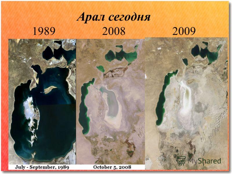 Арал сегодня 1989 2008 2009