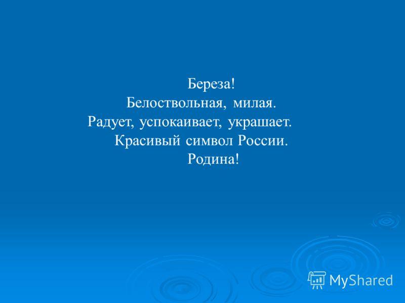 Береза! Белоствольная, милая. Радует, успокаивает, украшает. Красивый символ России. Родина!
