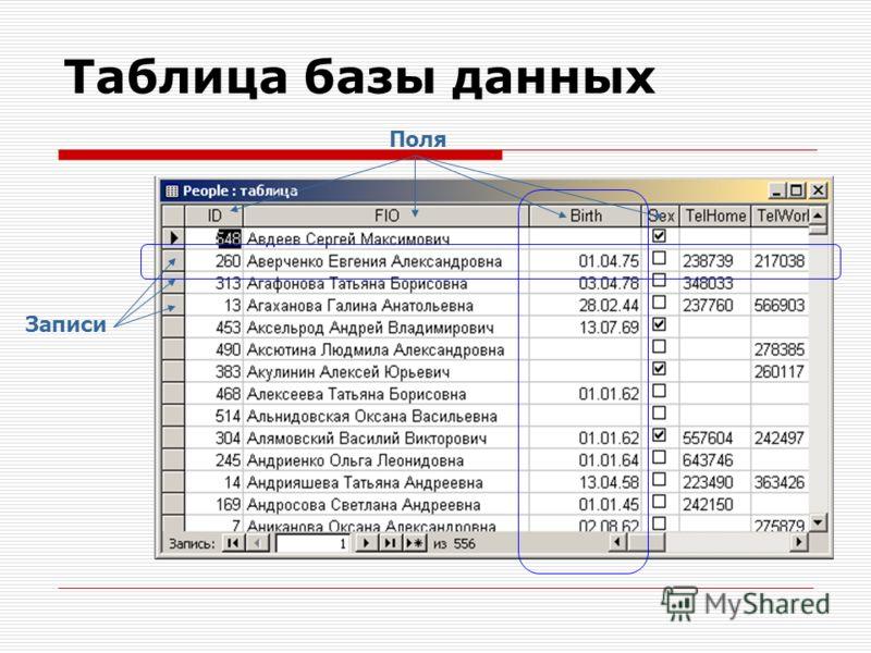 Таблица базы данных Поля Записи