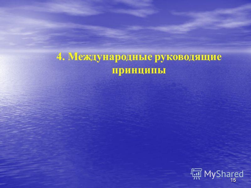 15 4. Международные руководящие принципы