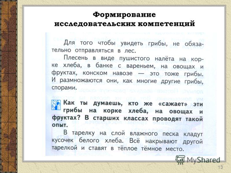 Формирование исследовательских компетенций 13