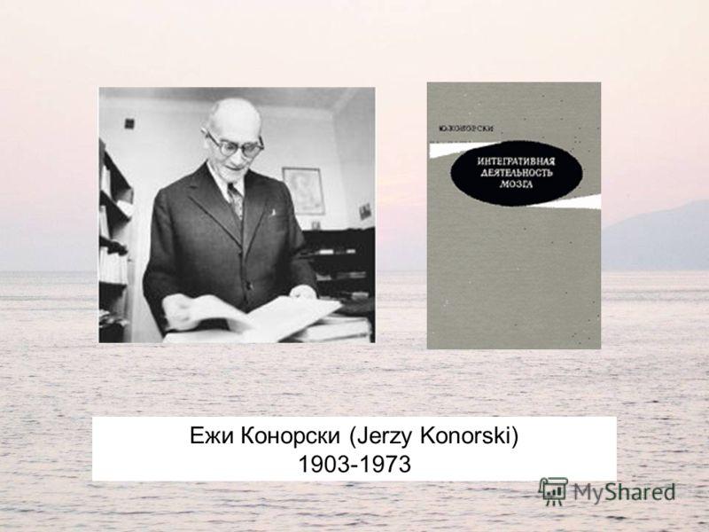 Ежи Конорски (Jerzy Konorski) 1903-1973