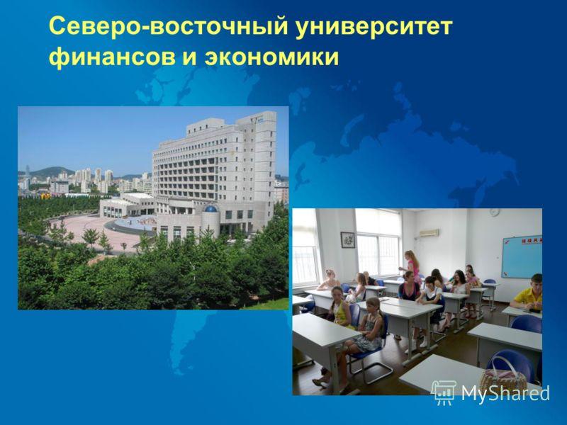 Северо-восточный университет финансов и экономики