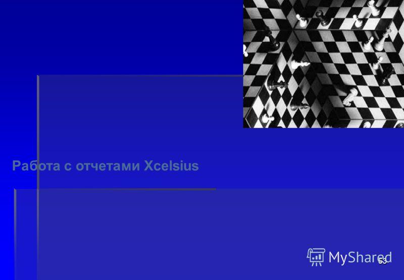 53 Работа с отчетами Xcelsius