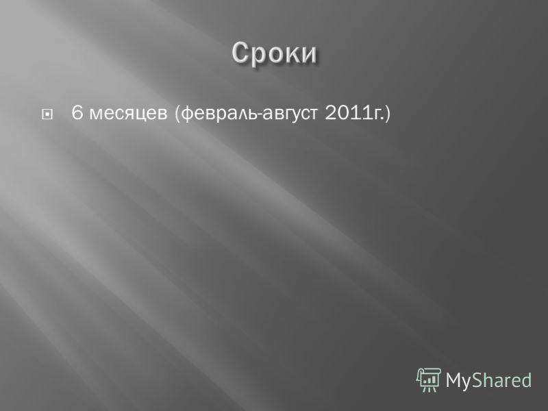 6 месяцев (февраль-август 2011г.)