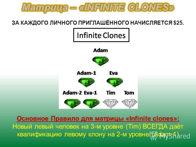 Основное Правило для матрицы «Infinite clones»: Новый левый человек на 3-м уровне (Тim) ВСЕГДА даёт квалификацию левому клону на 2-м уровне (Аdam-1) ЗА КАЖДОГО ЛИЧНОГО ПРИГЛАШЁННОГО НАЧИСЛЯЕТСЯ $25.