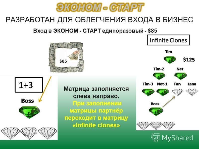 $85 Матрица заполняется слева направо. При заполнении матрицы партнёр переходит в матрицу «Infinite clones» Вход в ЭКОНОМ - СТАРТ единоразовый - $85
