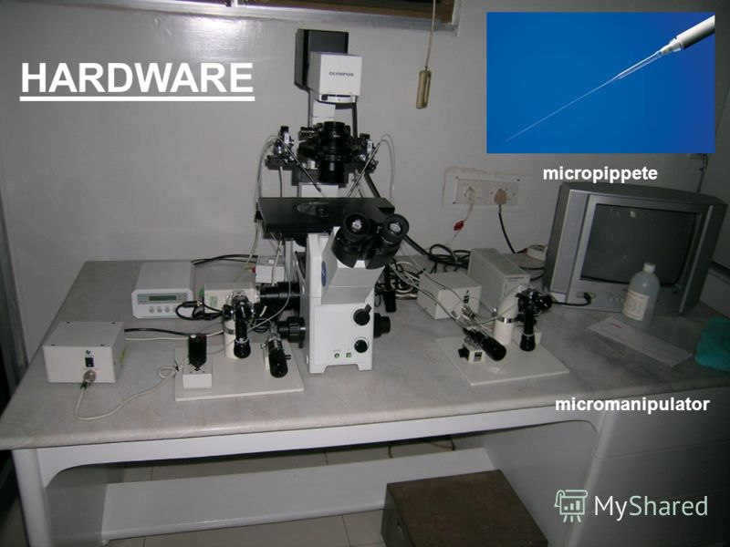 HARDWARE micromanipulator micropippete