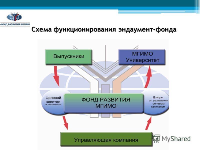 Схема функционирования эндаумент-фонда