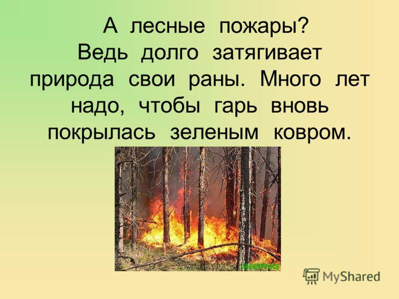 А лесные пожары? Ведь долго затягивает природа свои раны. Много лет надо, чтобы гарь вновь покрылась зеленым ковром.
