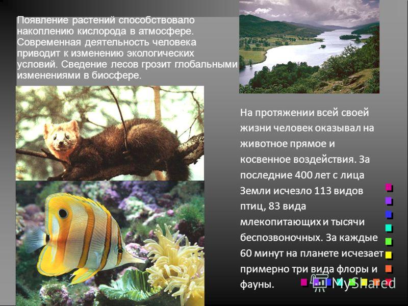 На протяжении всей своей жизни человек оказывал на животное прямое и косвенное воздействия. За последние 400 лет с лица Земли исчезло 113 видов птиц, 83 вида млекопитающих и тысячи беспозвоночных. За каждые 60 минут на планете исчезает примерно три в