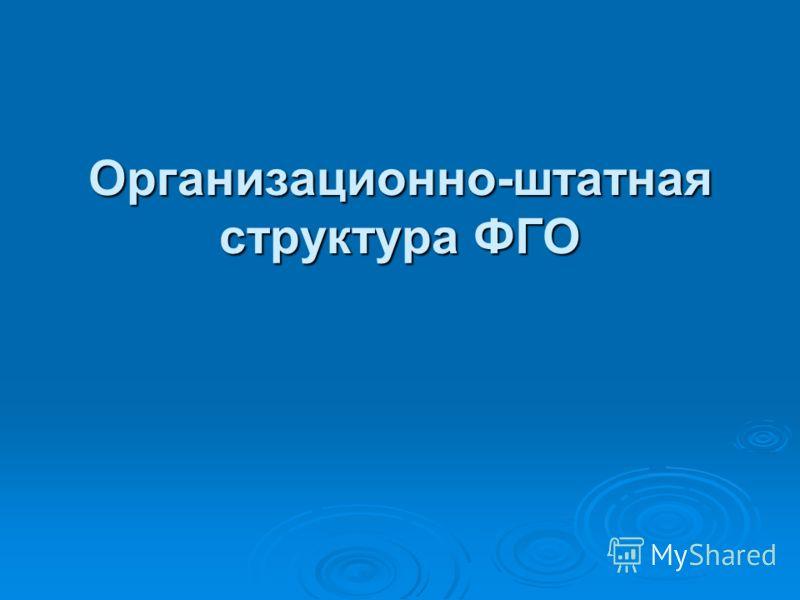 Организационно-штатная структура ФГО