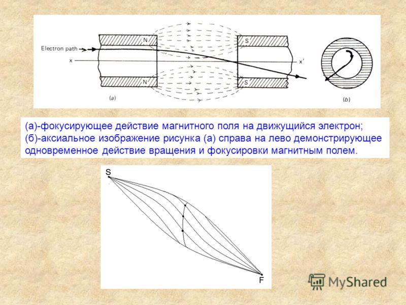 (а)-фокусирующее действие магнитного поля на движущийся электрон; (б)-аксиальное изображение рисунка (а) справа на лево демонстрирующее одновременное действие вращения и фокусировки магнитным полем.