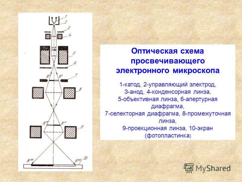 Оптическая схема просвечивающего электронного микроскопа 1-катод, 2-управляющий электрод, 3-анод, 4-конденсорная линза, 5-объективная линза, 6-апертурная диафрагма, 7-селекторная диафрагма, 8-промежуточная линза, 9-проекционная линза, 10-экран (фотоп