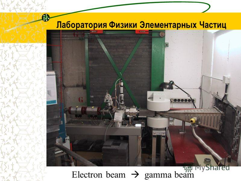 Лаборатория Физики Элементарных Частиц Electron beam gamma beam