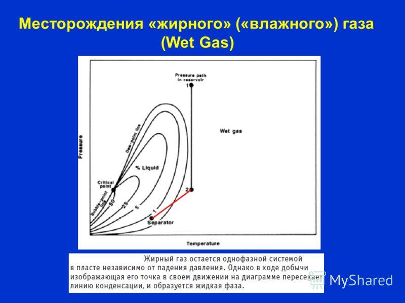Месторождения «жирного» («влажного») газа (Wet Gas)