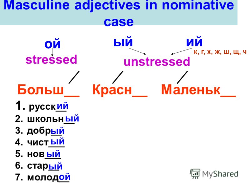 Masculine adjectives in nominative case ой ыйий stressed unstressed Больш__Красн__Маленьк__ ой ыйий к, г, х, ж, ш, щ, ч 1. русск__ 2. школьн__ 3. добр__ 4. чист___ 5. нов___ 6. стар__ 7. молод__ ий ый ой