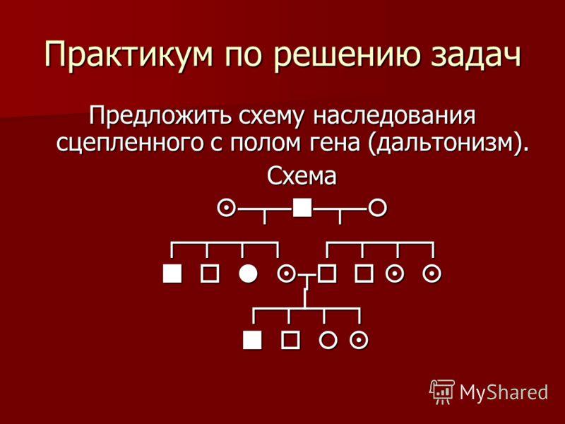 Практикум по решению задач Предложить схему наследования сцепленного с полом гена (дальтонизм). Схема Схема