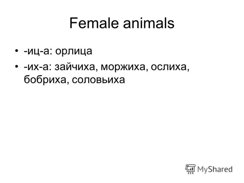 Female animals -иц-а: орлица -их-а: зайчиха, моржиха, ослиха, бобриха, соловьиха