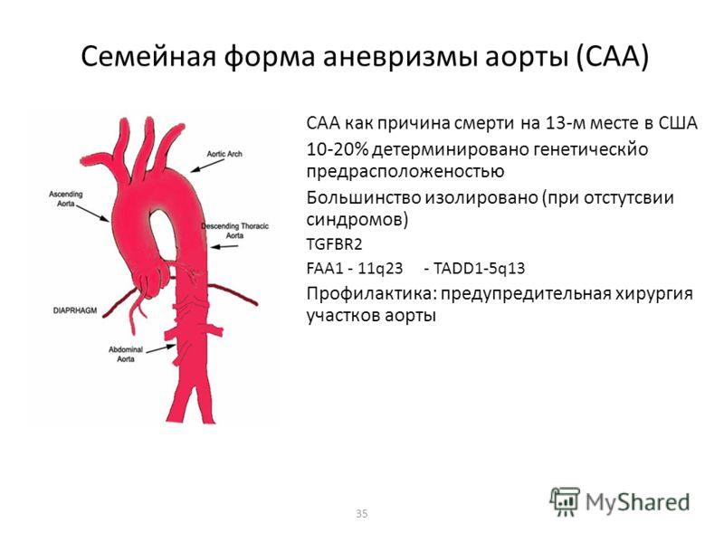 35 Семейная форма аневризмы аорты (САА) САА как причина смерти на 13-м месте в США 10-20% детерминировано генетическйо предрасположеностью Большинство изолировано (при отстутсвии синдромов) TGFBR2 FAA1 - 11q23 - TADD1-5q13 Профилактика: предупредител