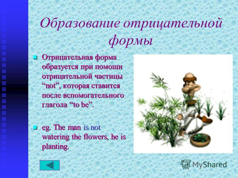 Образование отрицательной формы Отрицательная Отрицательная форма образуется при помощи отрицательной частицы not, not, которая ставится после вспомогательного глагола to be. eg. eg. The man is not watering the flowers, he is planting.