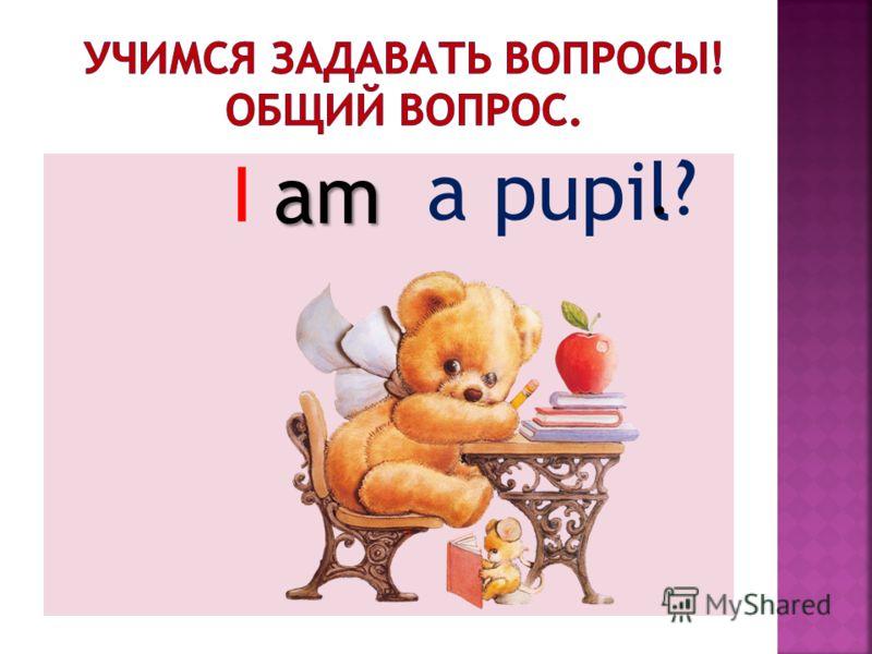 a pupil Iam.?