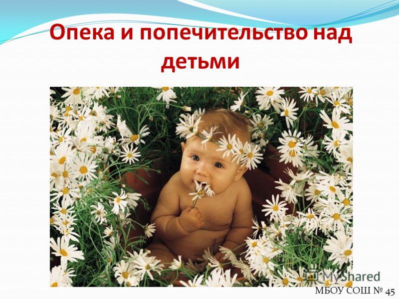 Опека и попечительство над детьми МБОУ СОШ 45