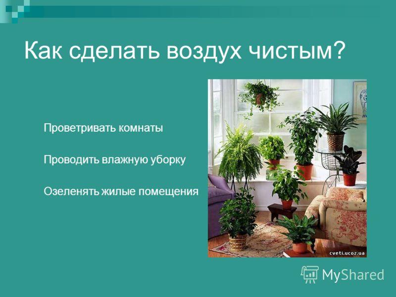 Как сделать воздух чистым? Проветривать комнаты Проводить влажную уборку Озеленять жилые помещения