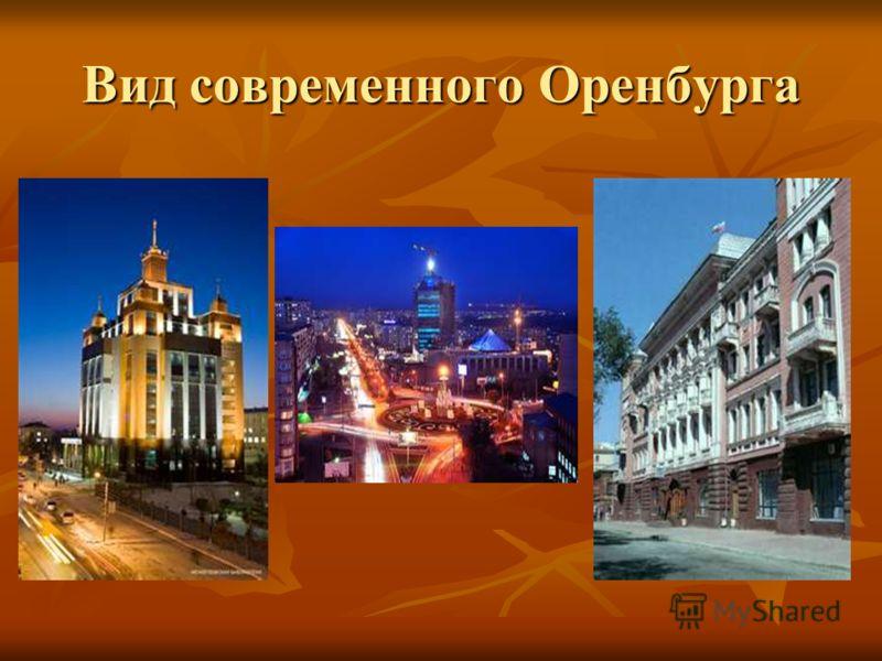 Вид современного Оренбурга