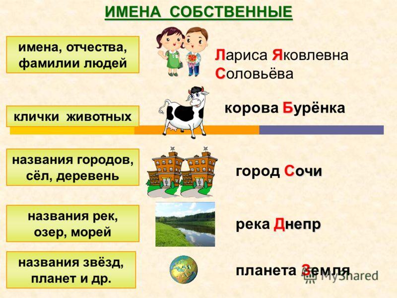 Русский язык Слово «собственный» происходит от старославянского собьство,что означает «свое», «личное», «себе принадлежащее»