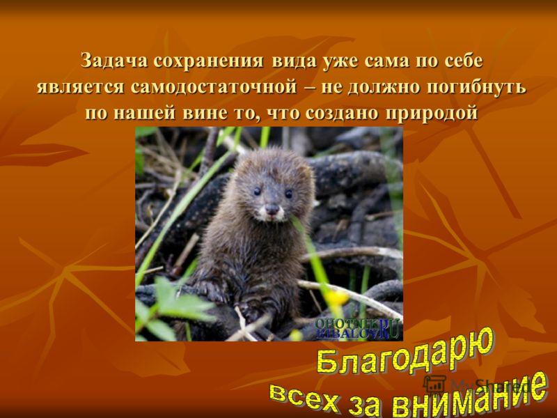 Задача сохранения вида уже сама по себе является самодостаточной – не должно погибнуть по нашей вине то, что создано природой