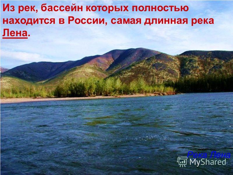 России самая длинная река лена река