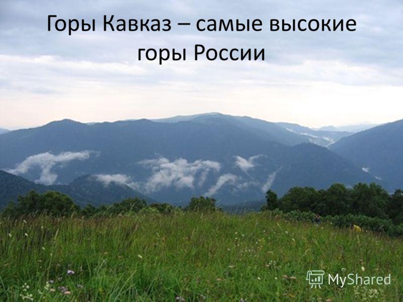 Горы кавказ – самые высокие горы