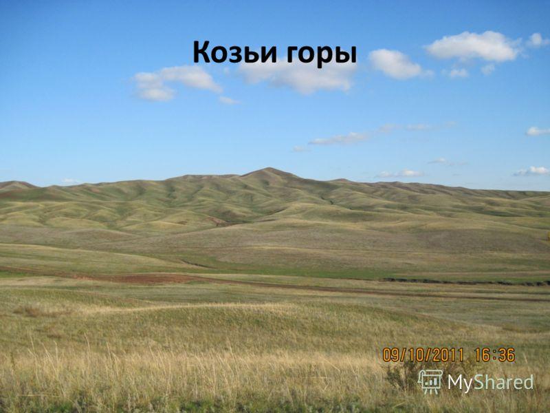 Козьи горы