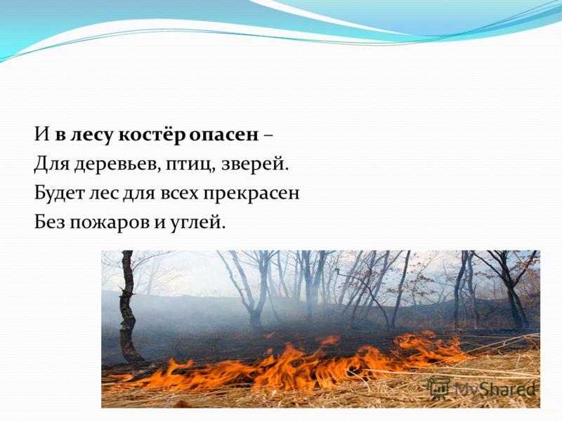 И в лесу костёр опасен – Для деревьев, птиц, зверей. Будет лес для всех прекрасен Без пожаров и углей.