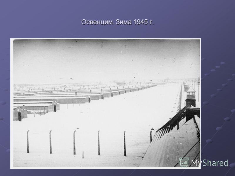Освенцим. Зима 1945 г.