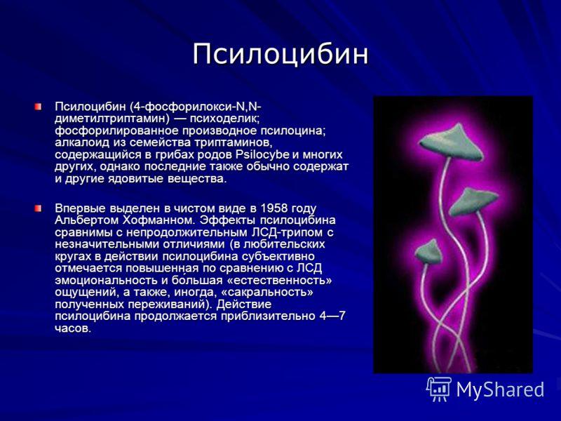 Псилоцибин Псилоцибин (4-фосфорилокси-N,N- диметилтриптамин) психоделик; фосфорилированное производное псилоцина; алкалоид из семейства триптаминов, содержащийся в грибах родов Psilocybe и многих других, однако последние также обычно содержат и други