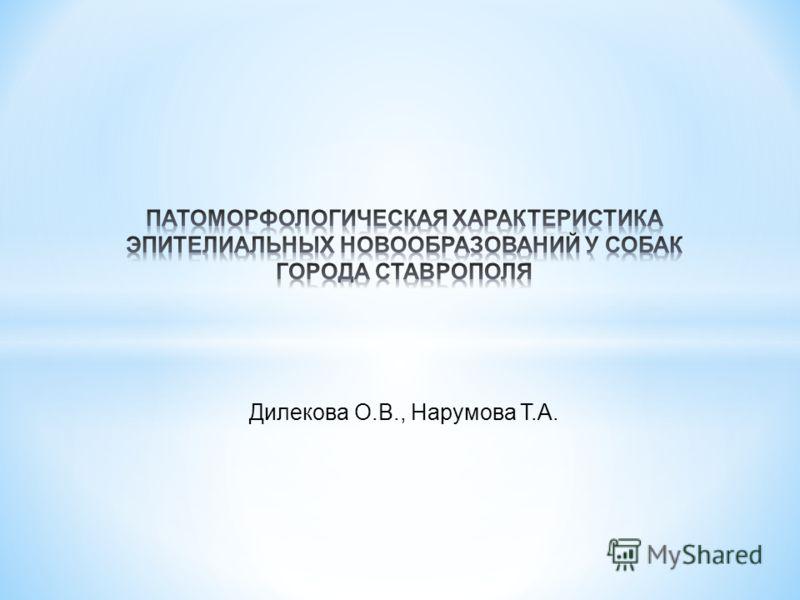 Дилекова О.В., Нарумова Т.А.