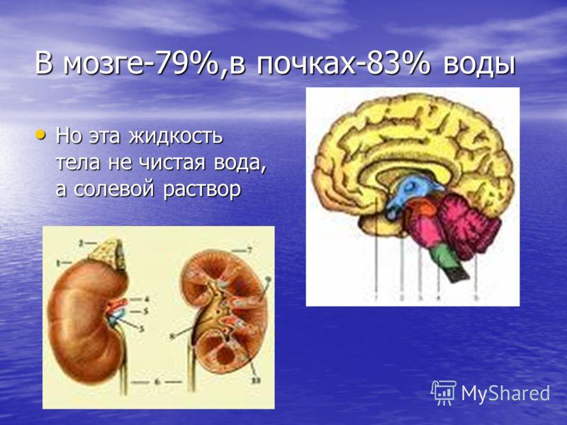 В мозге-79%,в почках-83% воды Но эта жидкость тела не чистая вода, а солевой раствор Но эта жидкость тела не чистая вода, а солевой раствор