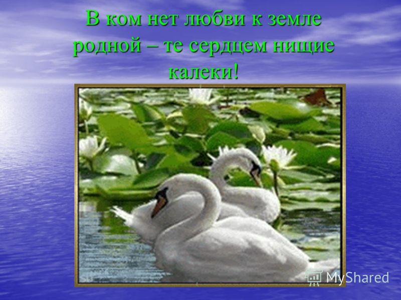 В ком нет любви к земле родной – те сердцем нищие калеки!