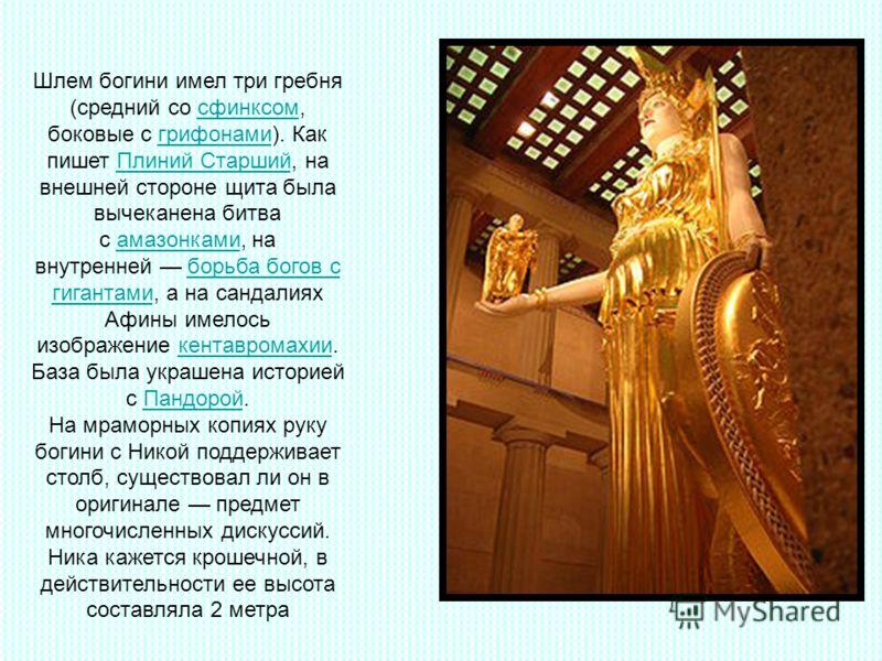 Шлем богини имел три гребня (средний со сфинксом, боковые с грифонами). Как пишет Плиний Старший, на внешней стороне щита была вычеканена битва с амазонками, на внутренней борьба богов с гигантами, а на сандалиях Афины имелось изображение кентавромах