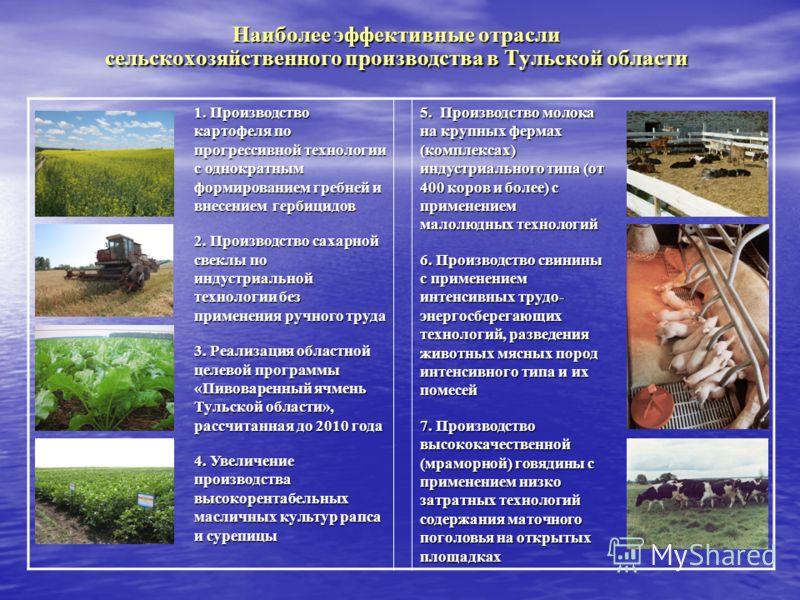 Наиболее эффективные отрасли сельскохозяйственного производства в Тульской области 1. Производство картофеля по прогрессивной технологии с однократным формированием гребней и внесением гербицидов 2. Производство сахарной свеклы по индустриальной техн