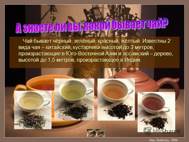 Чай бывает чёрный, зелёный, красный, жёлтый. Известны 2 вида чая – китайский, кустарники высотой до 3 метров, произрастающие в Юго-Восточной Азии и ассамский – дерево, высотой до 1,5 метров, произрастающее в Индии. Чай бывает чёрный, зелёный, красный