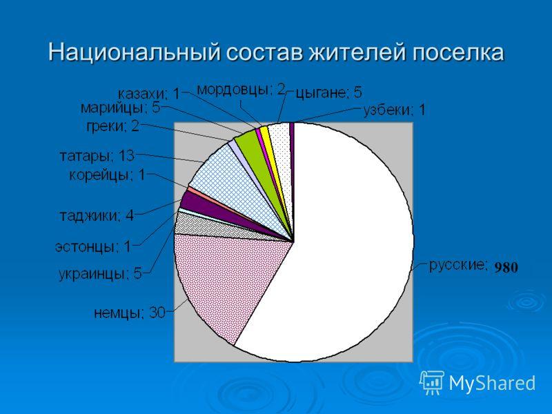 Национальный состав жителей поселка 980