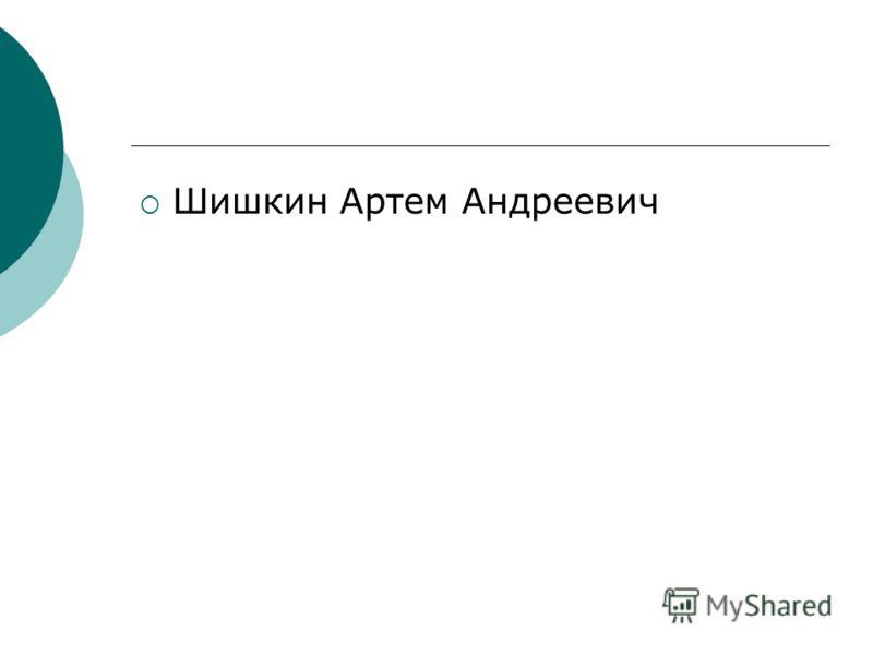 Шишкин Артем Андреевич