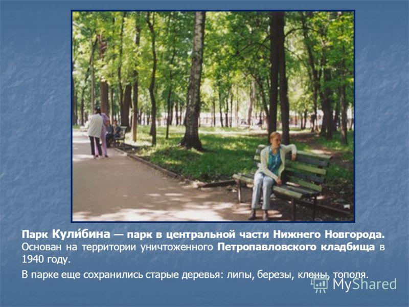 Парк Кули́бина парк в центральной части Нижнего Новгорода. Основан на территории уничтоженного Петропавловского кладбища в 1940 году. В парке еще сохранились старые деревья: липы, березы, клены, тополя.